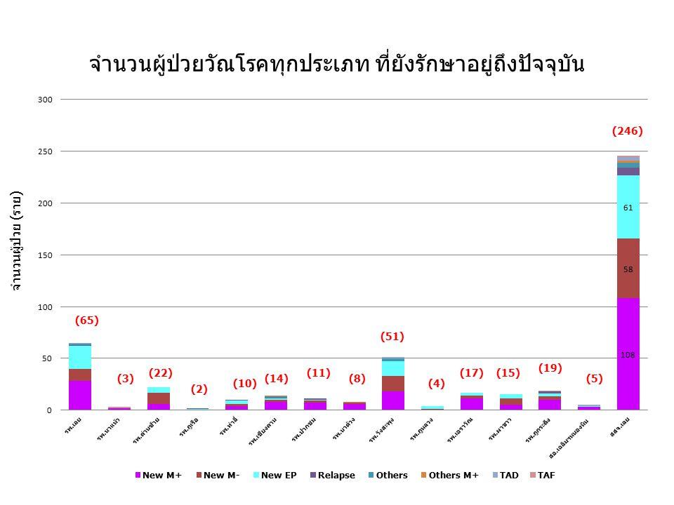 จำนวนผู้ป่วยวัณโรคทุกประเภท ที่ยังรักษาอยู่ถึงปัจจุบัน จำนวนผู้ป่วย (ราย) (65) (3)(8) (2) (10) (14) (11)(22) (51) (4) (17)(15) (19) (5) (246)