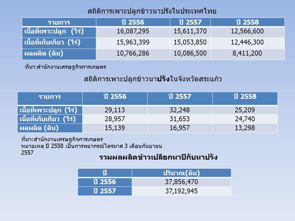 สถิติการเพาะปลูกข้าวนาปรังในประเทศไทย รายการปี 2556 ปี 2557 ปี 2558 เนื้อที่เพาะปลูก ( ไร่ )16,087,29515,611,37012,566,600 เนื้อที่เก็บเกียว ( ไร่ )15