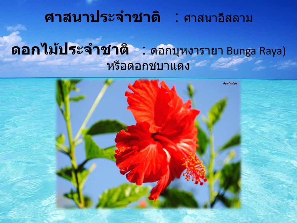 ศาสนาประจำชาติ : ศาสนาอิสลาม ดอกไม้ประจำชาติ : ดอกบุหงารายา Bunga Raya) หรือดอกชบาแดง