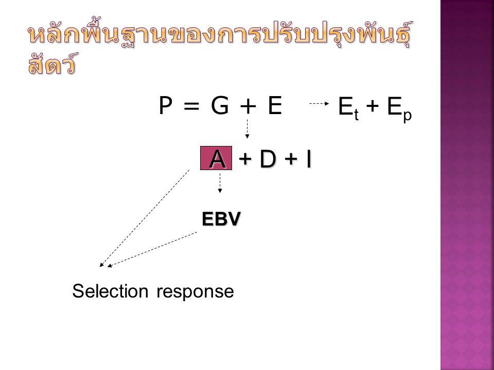 P = G + E A + D + I E t + E p EBV Selection response
