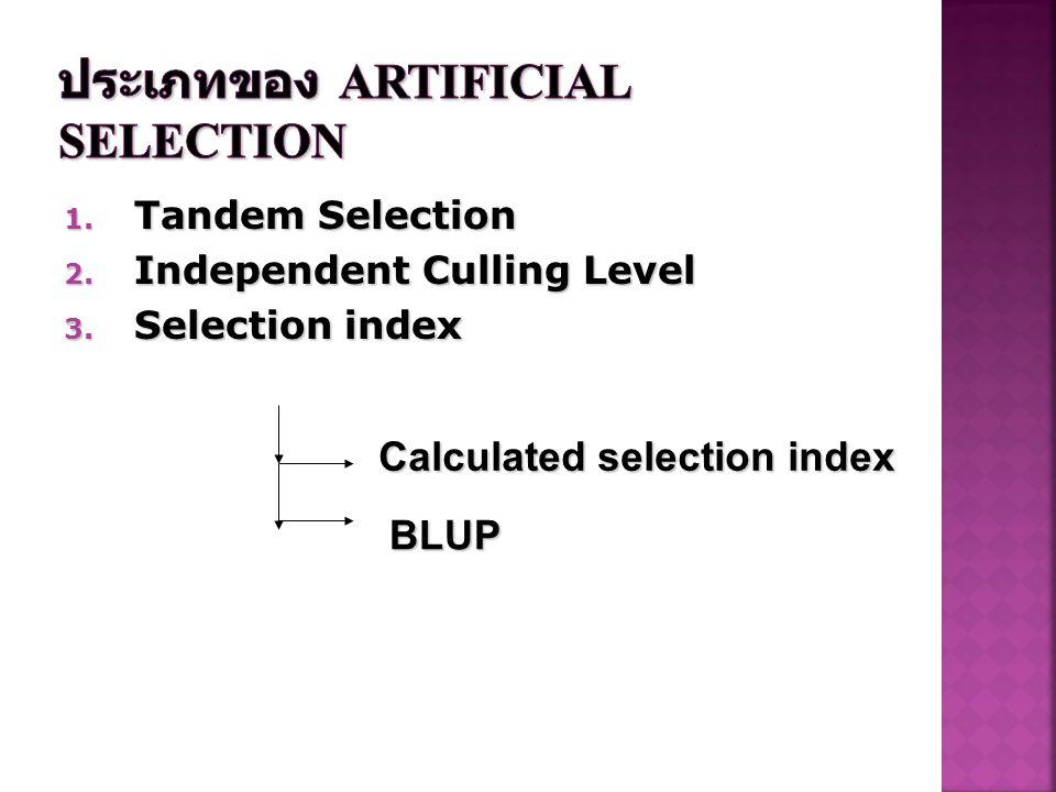 การคัดเลือก (selection) คือ .