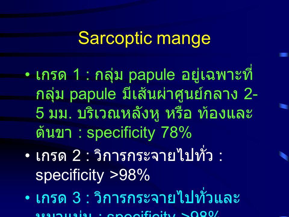 Sarcoptic mange เกรด 1 : กลุ่ม papule อยู่เฉพาะที่ กลุ่ม papule มีเส้นผ่าศูนย์กลาง 2- 5 มม. บริเวณหลังหู หรือ ท้องและ ต้นขา : specificity 78% เกรด 2 :