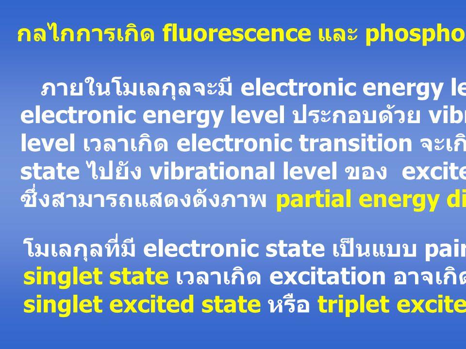 กลไกการเกิด fluorescence และ phosphorescence ภายในโมเลกุลจะมี electronic energy level ในแต่ละ electronic energy level ประกอบด้วย vibrational energy level เวลาเกิด electronic transition จะเกิดจาก ground state ไปยัง vibrational level ของ excited electronic state ซึ่งสามารถแสดงดังภาพ partial energy diagram โมเลกุลที่มี electronic state เป็นแบบ paired เรียกว่า singlet state เวลาเกิด excitation อาจเกิดเป็น singlet excited state หรือ triplet excited state