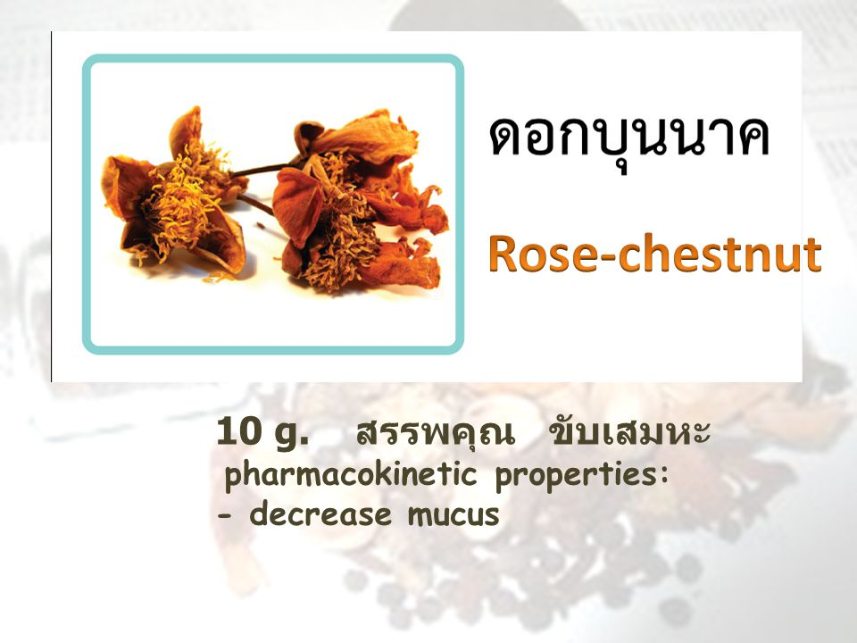 10 g. สรรพคุณ ขับเสมหะ pharmacokinetic properties: - decrease mucus