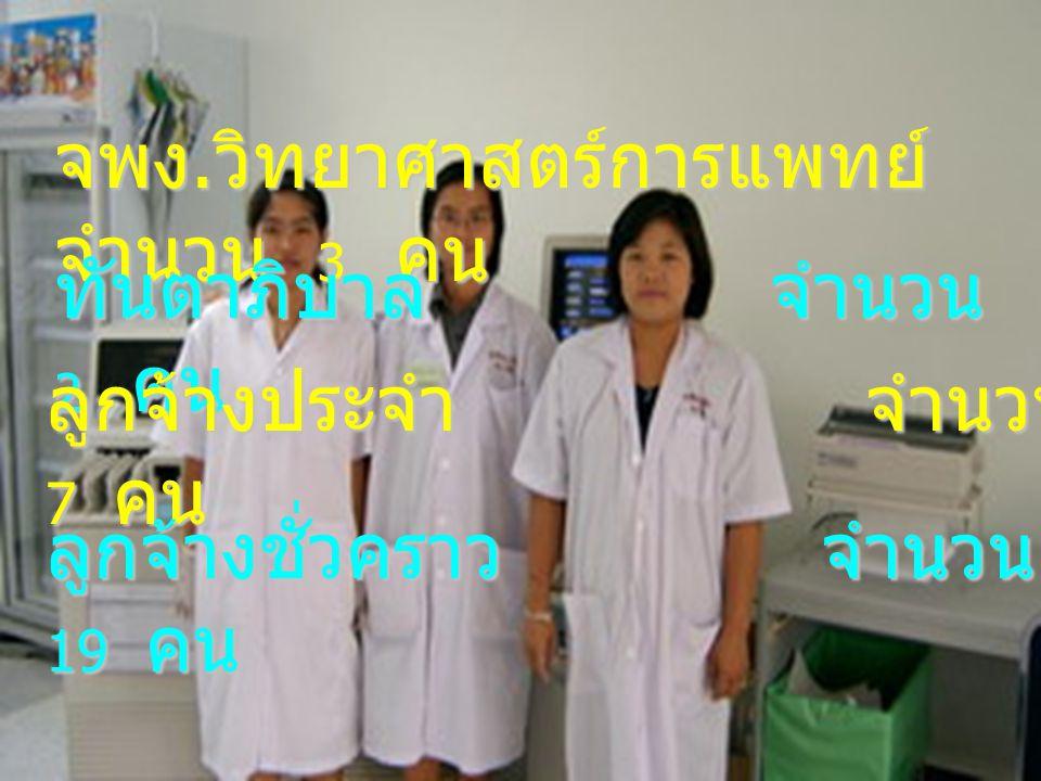 จพง. วิทยาศาสตร์การแพทย์ จำนวน 3 คน ทันตาภิบาล จำนวน 2 คน ลูกจ้างประจำ จำนวน 7 คน ลูกจ้างชั่วคราว จำนวน 19 คน