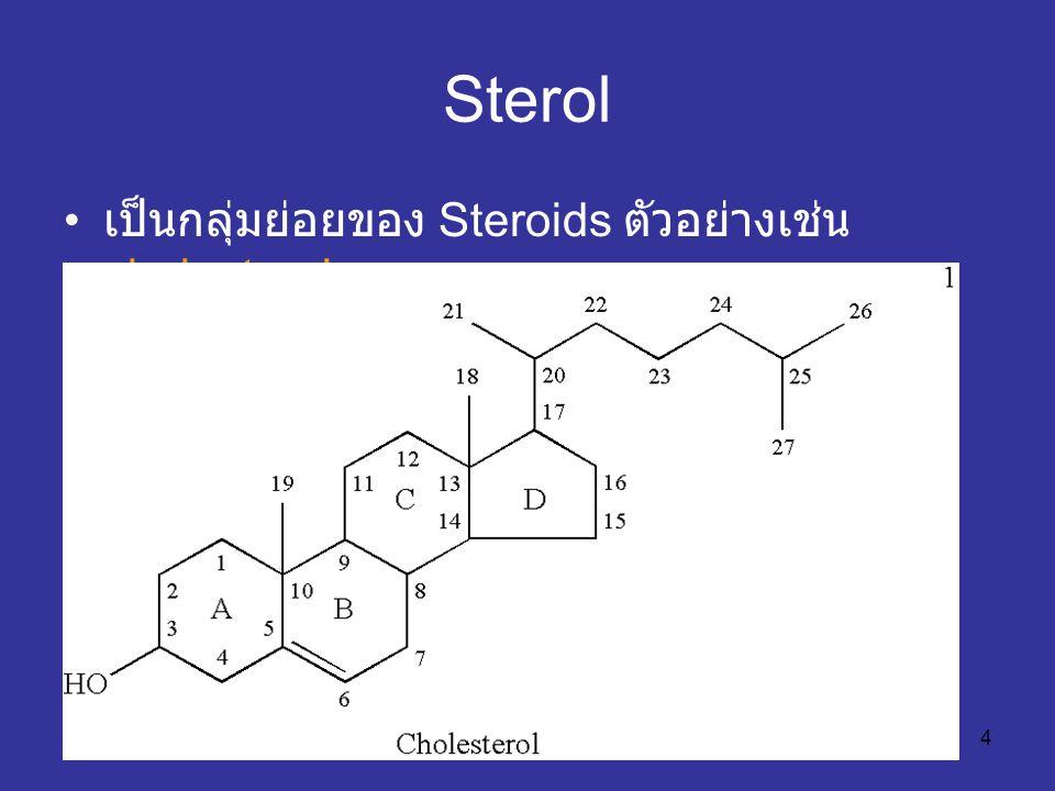5 Cholesterol เป็น sterol ที่พบมากที่สุดในเนื้อเยื่อของสัตว์ พบทั้งแบบอิสระและอยู่รวมกับสารอื่น ประมาณ 2 ใน 3 ของ cholesterol ในพลาสมา จะอยู่รวมกับกรดไขมันเป็น cholesteryl ester ในพืชไม่พบ cholesterol แต่จะพบ stigmasterol สังเคราะห์ที่ตับ นำไปสร้างวิตามิน D กรดน้ำดี ฮอร์โมนเพศ