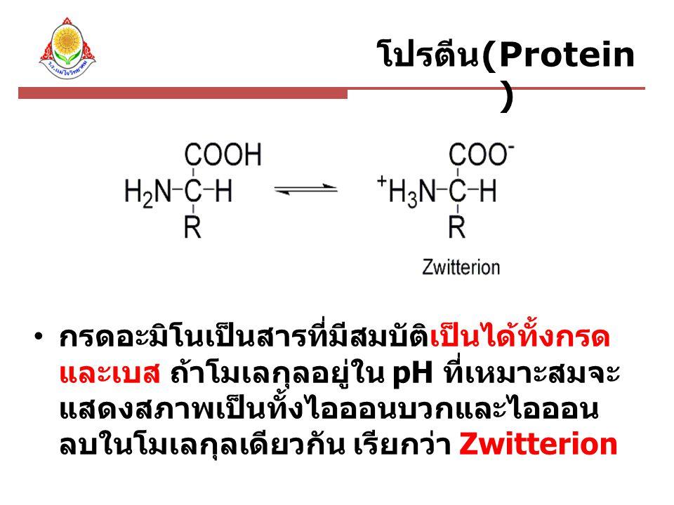 กรดอะมิโนเป็นสารที่มีสมบัติเป็นได้ทั้งกรด และเบส ถ้าโมเลกุลอยู่ใน pH ที่เหมาะสมจะ แสดงสภาพเป็นทั้งไอออนบวกและไอออน ลบในโมเลกุลเดียวกัน เรียกว่า Zwitterion