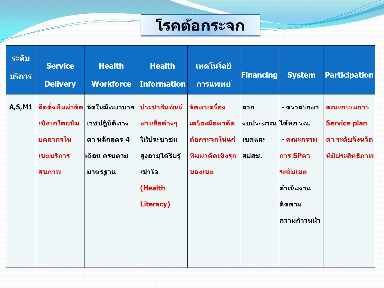 ระดับ บริการ Service Delivery Health Workforce Health Information เทคโนโลยี การแพทย์ FinancingSystemParticipation A,S,M1 จัดตั้งทีมผ่าตัด เชิงรุกโดยที