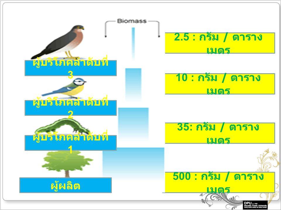 500 : กรัม / ตาราง เมตร 35: กรัม / ตาราง เมตร 10 : กรัม / ตาราง เมตร 2.5 : กรัม / ตาราง เมตร ผู้บริโภคลำดับที่ 3 ผู้บริโภคลำดับที่ 2 ผู้บริโภคลำดับที่ 1 ผู้ผลิต