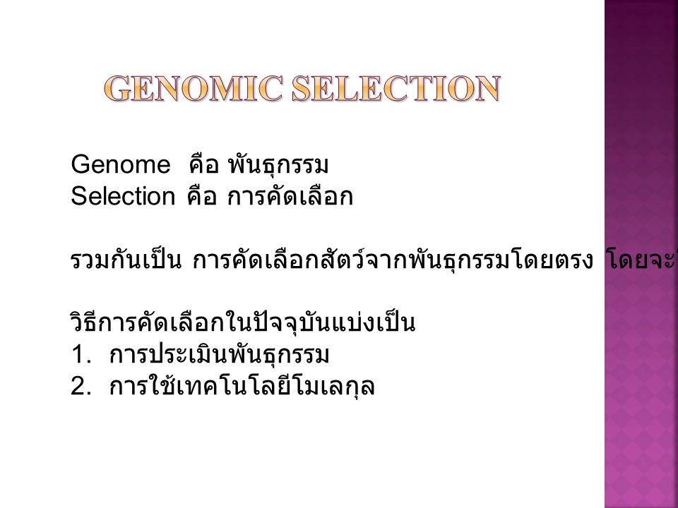 X Genome คือ พันธุกรรม Selection คือ การคัดเลือก รวมกันเป็น การคัดเลือกสัตว์จากพันธุกรรมโดยตรง โดยจะใช้วิธีการใดๆร่วมกัน วิธีการคัดเลือกในปัจจุบันแบ่ง