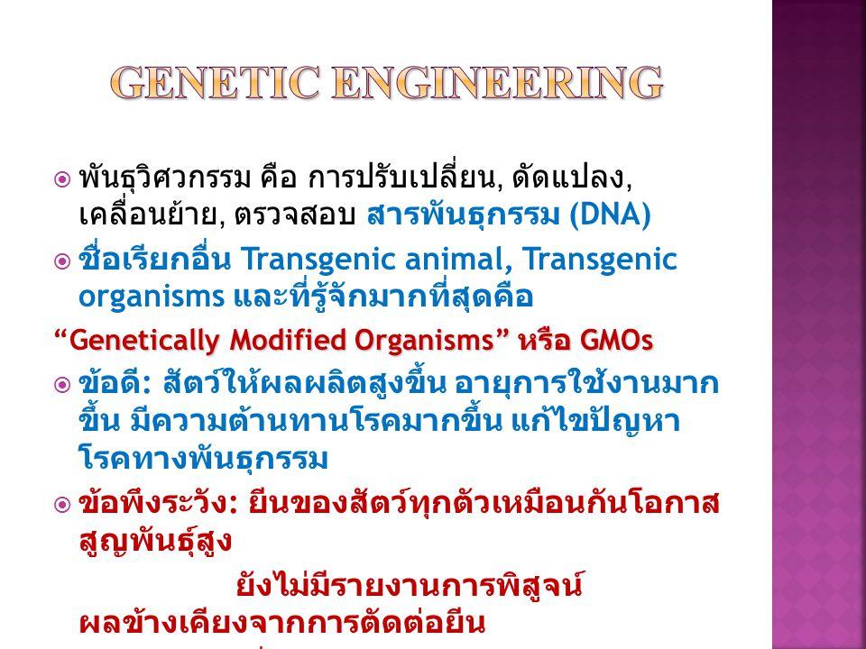  พันธุวิศวกรรม คือ การปรับเปลี่ยน, ดัดแปลง, เคลื่อนย้าย, ตรวจสอบ สารพันธุกรรม (DNA)  ชื่อเรียกอื่น Transgenic animal, Transgenic organisms และที่รู้