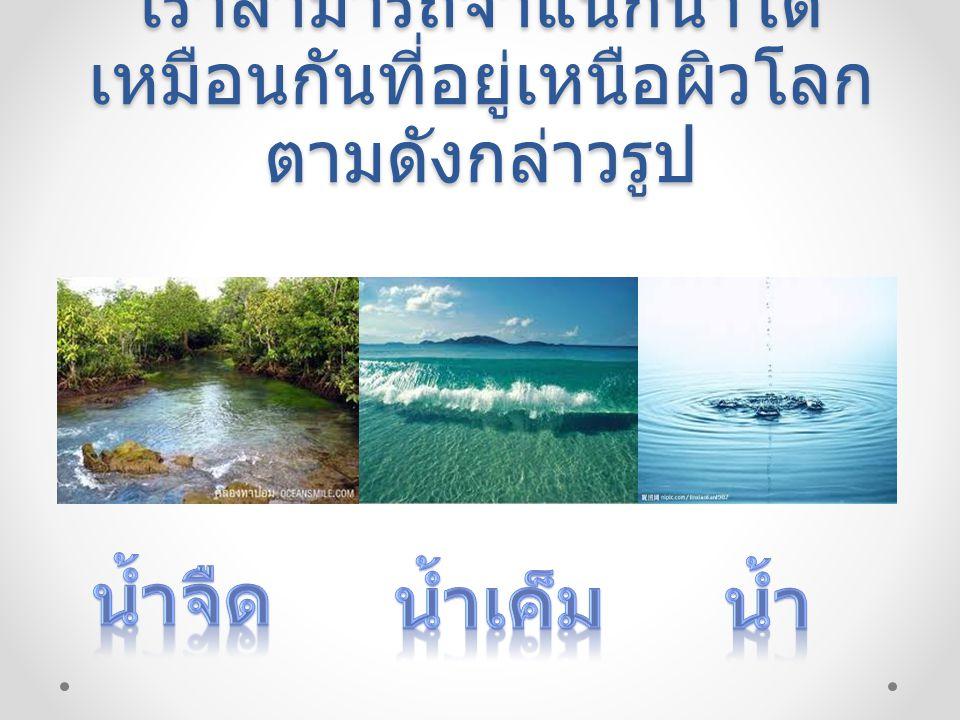 น้ำจืดคือน้ำในแหล่งน้ำทั่วไป อาทิบ่อน้ำทะเลสาบแม่น้ำลำ ธารเป็นต้น