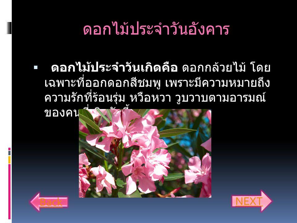 ดอกไม้ประจำวันจันทร์  ดอกไม้ประจำวันเกิด คือดอกมะลิขาวสะอาด ดอกกุหลาบขาว หมายถึงความรักที่อ่อนโยนและ ไม่ต้องการสิ่งใดตอบแทนเพราะคนวันจันทร์มัก อ่อนไห