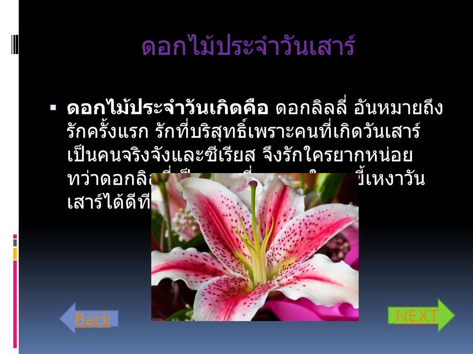 ดอกไม้ประจำวันศุกร์  ดอกไม้ของเธอคือ กุหลาบทุกสี เพราะคนที่ เกิดวันศุกร์มักเป็นนักรักที่ยิ่งใหญ่มีเสน่ห์ล้น เหลือ คนเกิดวันศุกร์บางอารมณ์ก็โลเล จึงได