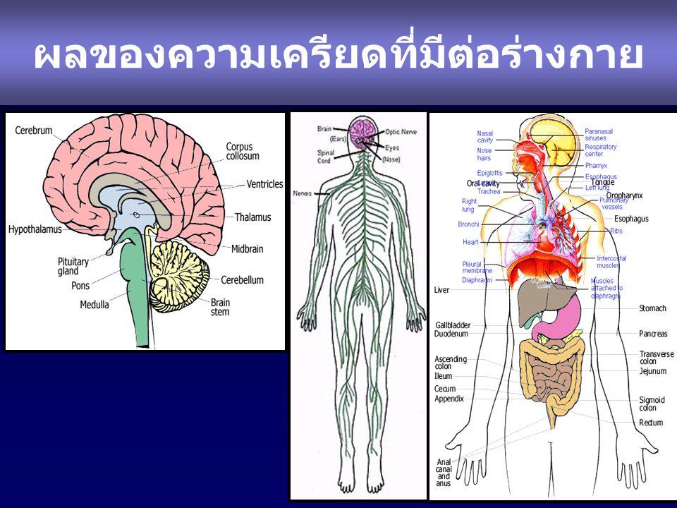 ผลของความเครียดที่มีต่อร่างกาย