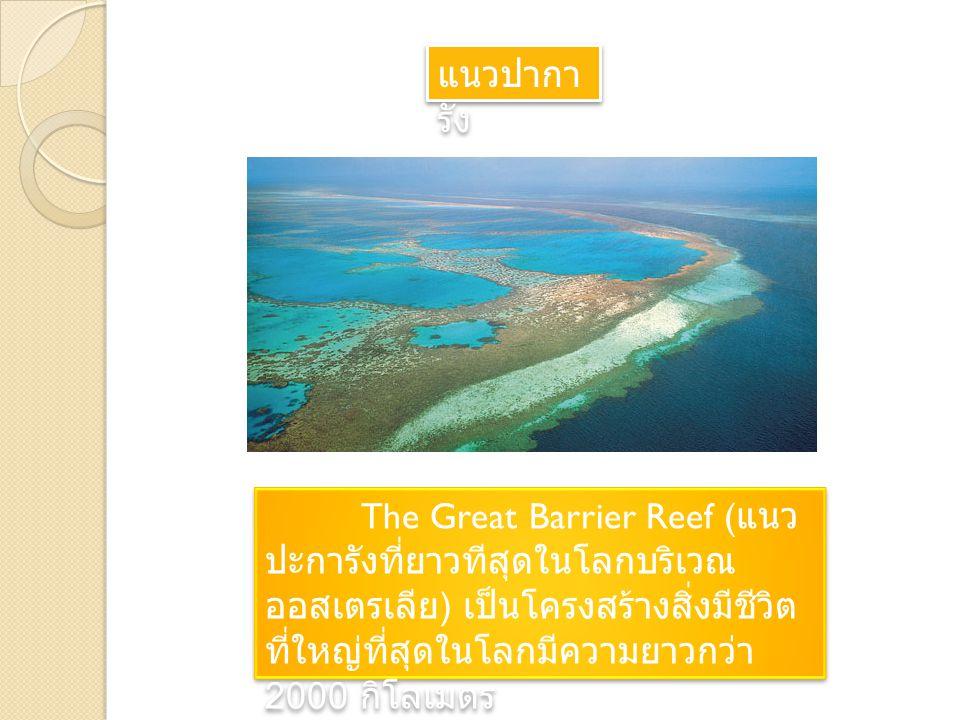 แนวปากา รัง The Great Barrier Reef ( แนว ปะการังที่ยาวทีสุดในโลกบริเวณ ออสเตรเลีย ) เป็นโครงสร้างสิ่งมีชีวิต ที่ใหญ่ที่สุดในโลกมีความยาวกว่า 2000 กิโลเมตร