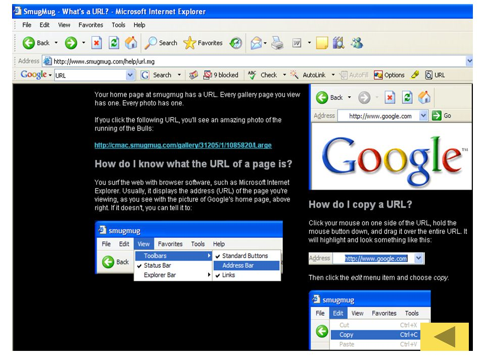 IE - Explorer Basics Save a Web Page –File – Save as – Save as type Save an Image –คลิกขวาบนภาพ –Save Picture As… Copy and Paste Find a Word on the Page –Search with Explorer เมนู View – Explorer Bar - Search –Organizing Favorites
