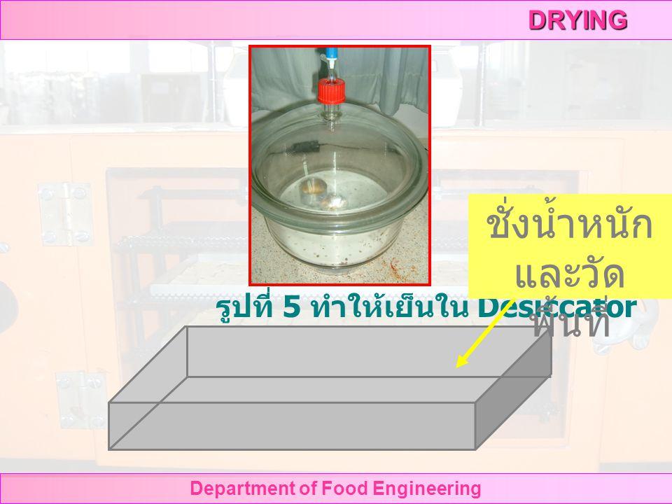 DRYING Department of Food Engineering รูปที่ 3 นำตัวอย่างใส่ตู้อบลมร้อน รูปที่ 4 Hot air oven 105 o C 24 hr.