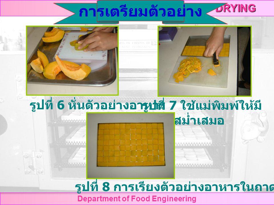 DRYING Department of Food Engineering รูปที่ 6 หั่นตัวอย่างอาหาร รูปที่ 7 ใช้แม่พิมพ์ให้มี ขนาดสม่ำเสมอ การเตรียมตัวอย่าง รูปที่ 8 การเรียงตัวอย่างอาหารในถาด