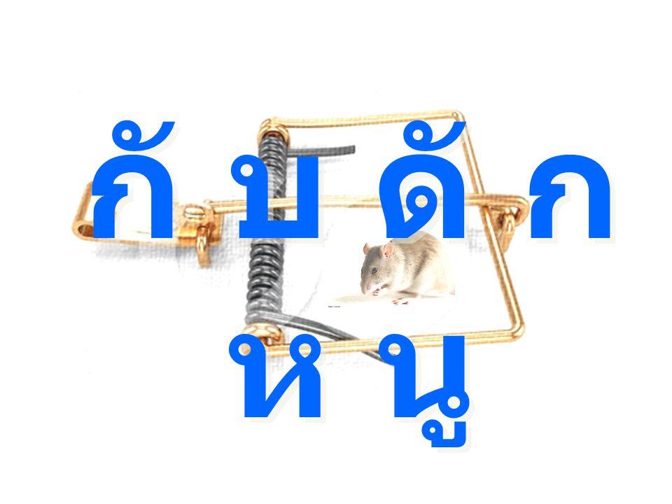 กั บ ดั ก ห นู