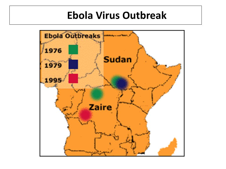 Ebola Virus Inflicts Deadly Toll on African Health Workers by Africa News Life after Ebola has new meaning for two survivors now helping others