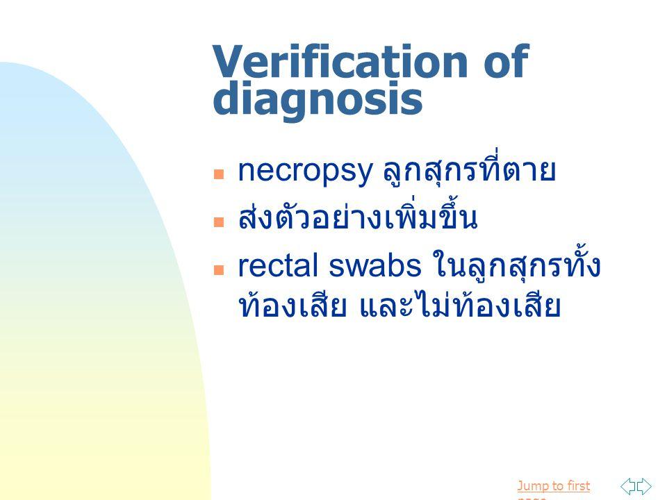 Jump to first page Verification of diagnosis necropsy ลูกสุกรที่ตาย ส่งตัวอย่างเพิ่มขึ้น rectal swabs ในลูกสุกรทั้ง ท้องเสีย และไม่ท้องเสีย