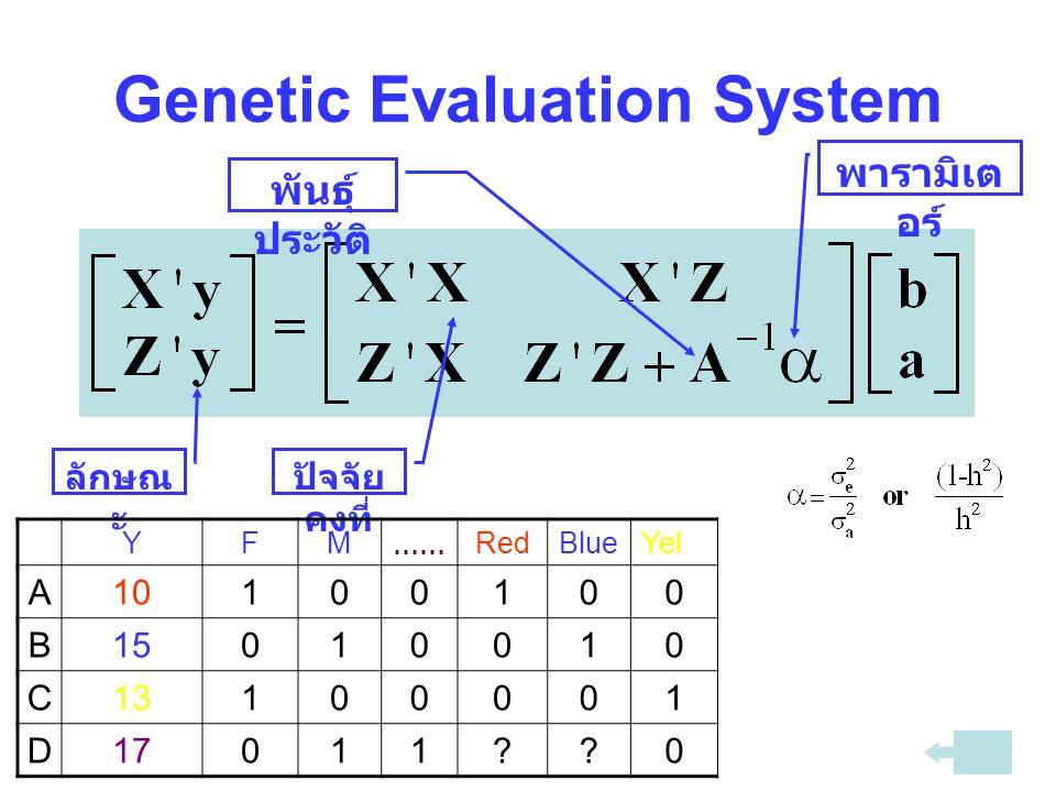 Genetic Evaluation System พันธุ์ ประวัติ พารามิเต อร์ ลักษณ ะ ปัจจัย คงที่ YFM......RedBlueYel A10100100 B15010010 C13100001 D17011??0