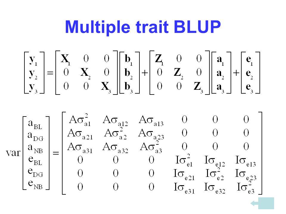 Multiple trait BLUP