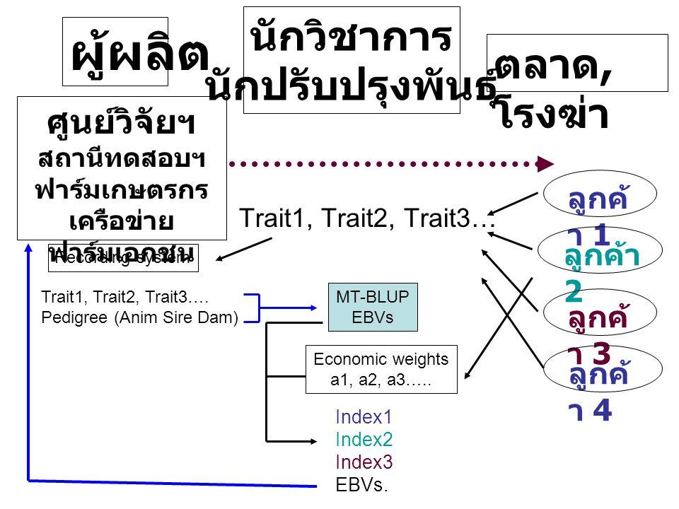 ผู้ผลิต นักวิชาการ นักปรับปรุงพันธุ์ ตลาด, โรงฆ่า MT-BLUP EBVs Trait1, Trait2, Trait3… Trait1, Trait2, Trait3….