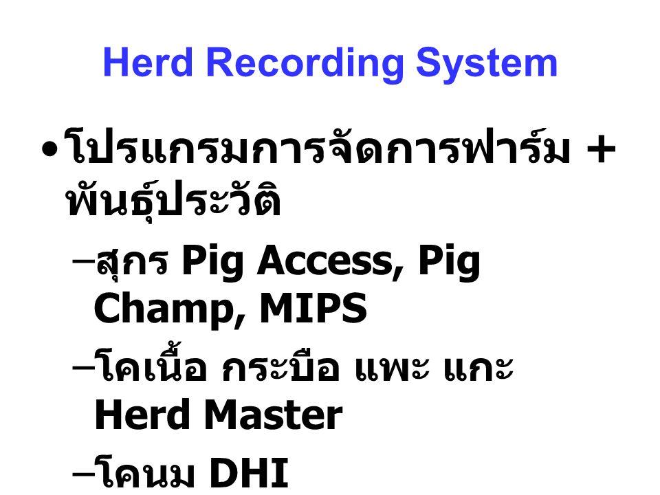 Herd Recording System โปรแกรมการจัดการฟาร์ม + พันธุ์ประวัติ – สุกร Pig Access, Pig Champ, MIPS – โคเนื้อ กระบือ แพะ แกะ Herd Master – โคนม DHI – สัตว์ปีก Poultry Excel ???
