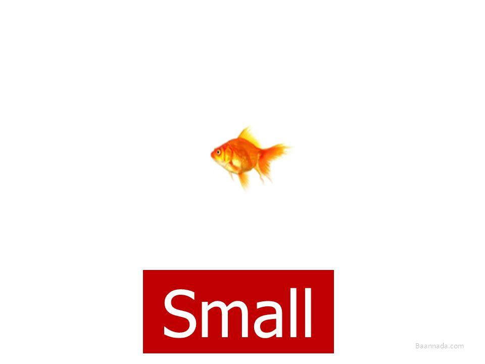 Baannada.com Small