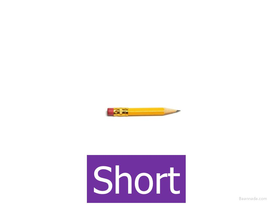 Baannada.com Short