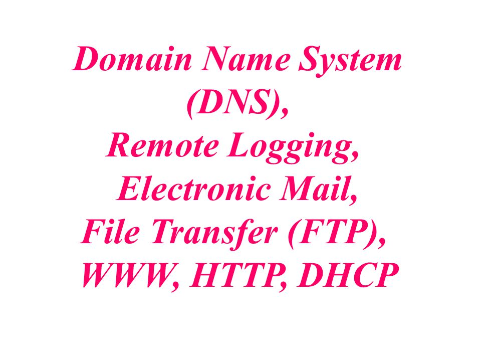 Domain Name System (DNS), Remote Logging, Electronic Mail, File Transfer (FTP), WWW, HTTP, DHCP