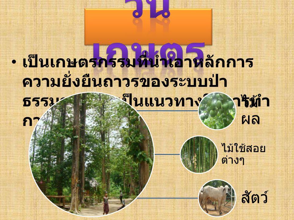 เป็นเกษตรกรรมที่นำเอาหลักการ ความยั่งยืนถาวรของระบบป่า ธรรมชาติ มาเป็นแนวทางในการทำ การเกษตร ไม้ ผล ไม้ใช้สอย ต่างๆ สัตว์