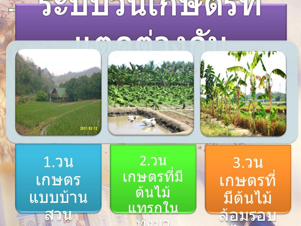 1. วน เกษตร แบบบ้าน สวน 2. วน เกษตรที่มี ต้นไม้ แทรกใน ทุ่งนา 3. วน เกษตรที่ มีต้นไม้ ล้อมรอบ ไร่นา