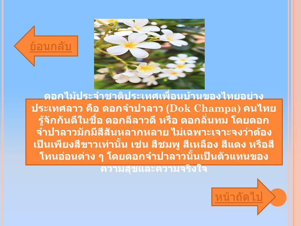 ดอกไม้ประจำชาติประเทศเพื่อนบ้านของไทยอย่าง ประเทศลาว คือ ดอกจำปาลาว (Dok Champa) คนไทย รู้จักกันดีในชื่อ ดอกลีลาวดี หรือ ดอกลั่นทม โดยดอก จำปาลาวมักมีสีสันหลากหลาย ไม่เฉพาะเจาะจงว่าต้อง เป็นเพียงสีขาวเท่านั้น เช่น สีชมพู สีเหลือง สีแดง หรือสี โทนอ่อนต่าง ๆ โดยดอกจำปาลาวนั้นเป็นตัวแทนของ ความสุขและความจริงใจ ย้อนกลับ หน้าถัดไป