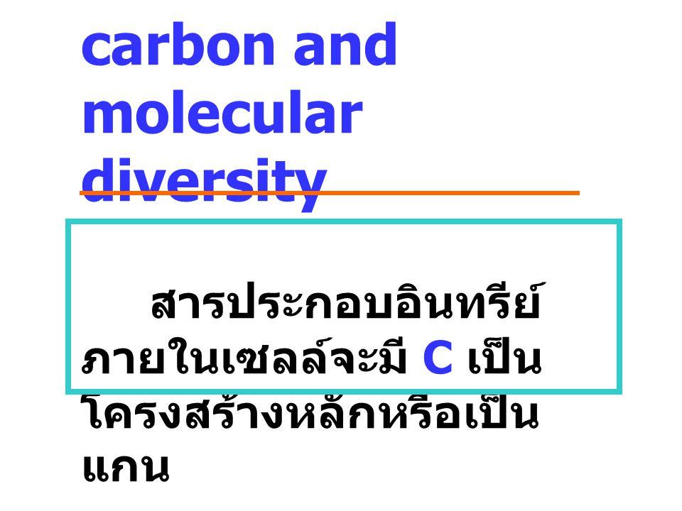 carbon and molecular diversity สารประกอบอินทรีย์ ภายในเซลล์จะมี C เป็น โครงสร้างหลักหรือเป็น แกน