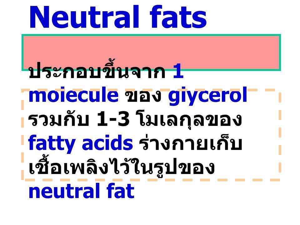 Neutral fats ประกอบขึ้นจาก 1 molecule ของ glycerol รวมกับ 1-3 โมเลกุลของ fatty acids ร่างกายเก็บ เชื้อเพลิงไว้ในรูปของ neutral fat