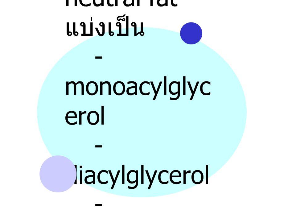 neutral fat แบ่งเป็น - monoacylglyc erol - diacylglycerol - triacylglycerol