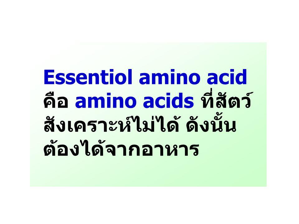 Essentiol amino acid คือ amino acids ที่สัตว์ สังเคราะห์ไม่ได้ ดังนั้น ต้องได้จากอาหาร
