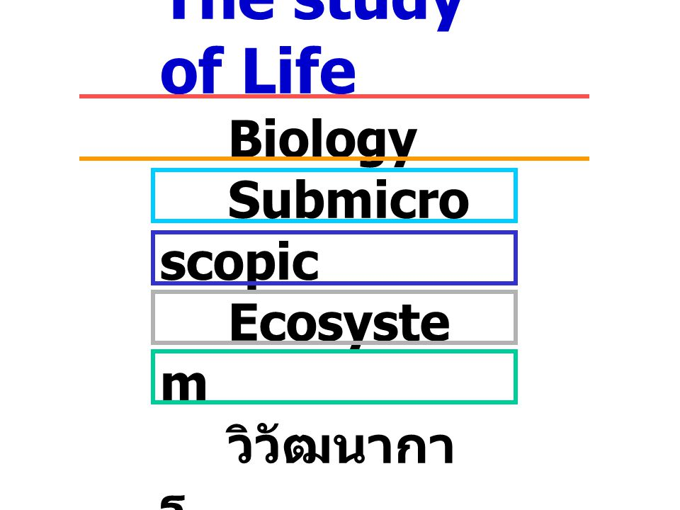 The study of Life Biology Submicro scopic Ecosyste m วิวัฒนากา ร