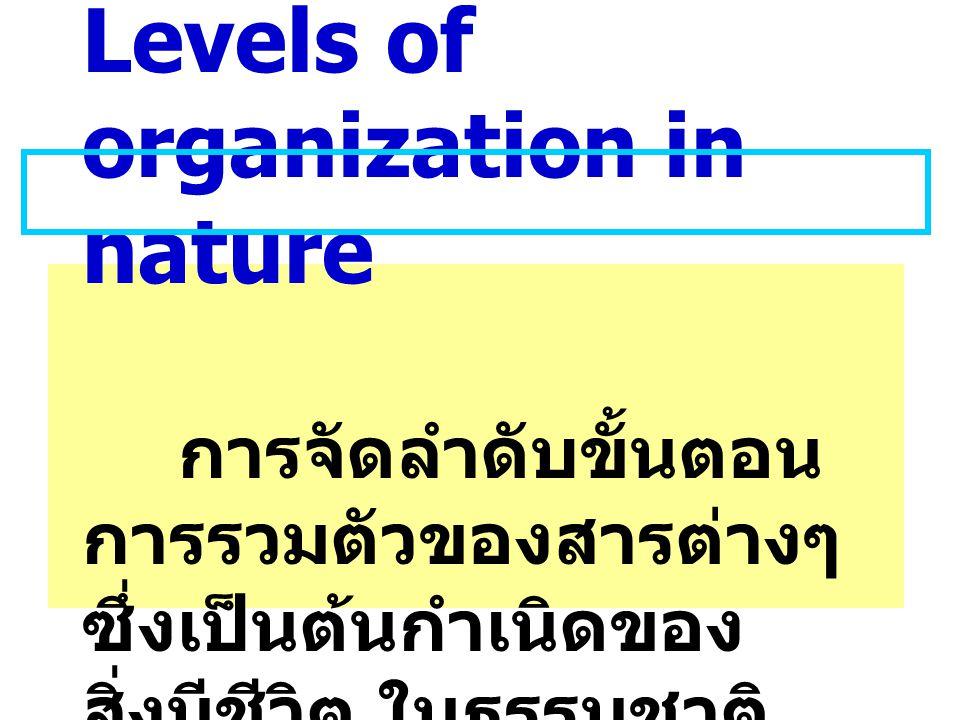 Levels of organization in nature การจัดลำดับขั้นตอน การรวมตัวของสารต่างๆ ซึ่งเป็นต้นกำเนิดของ สิ่งมีชีวิต ในธรรมชาติ