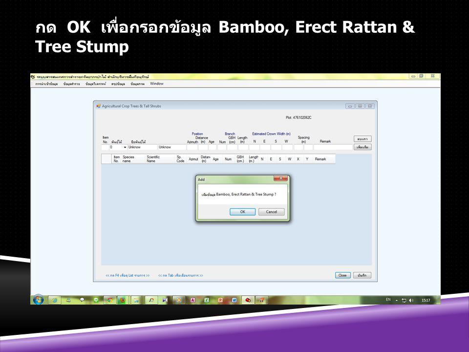 กด OK เพื่อกรอกข้อมูล Bamboo, Erect Rattan & Tree Stump
