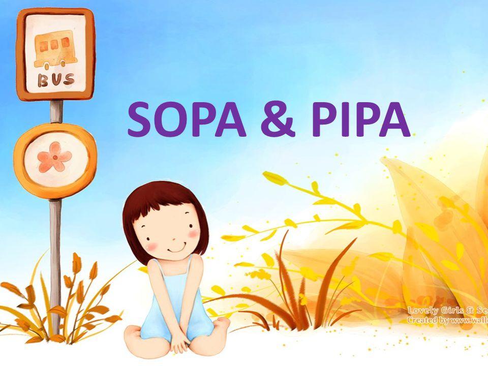 อาจารย์ครับ SOPA &PIPA คือ อะไรครับ
