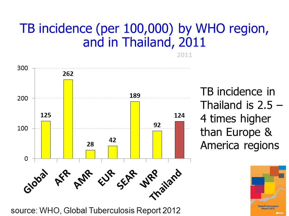 TB incidence (per 100,000) by WHO region, and in Thailand, 2011 source: WHO, Global Tuberculosis Report 2012 TB incidence in Thailand is 2.5 – 4 times higher than Europe & America regions