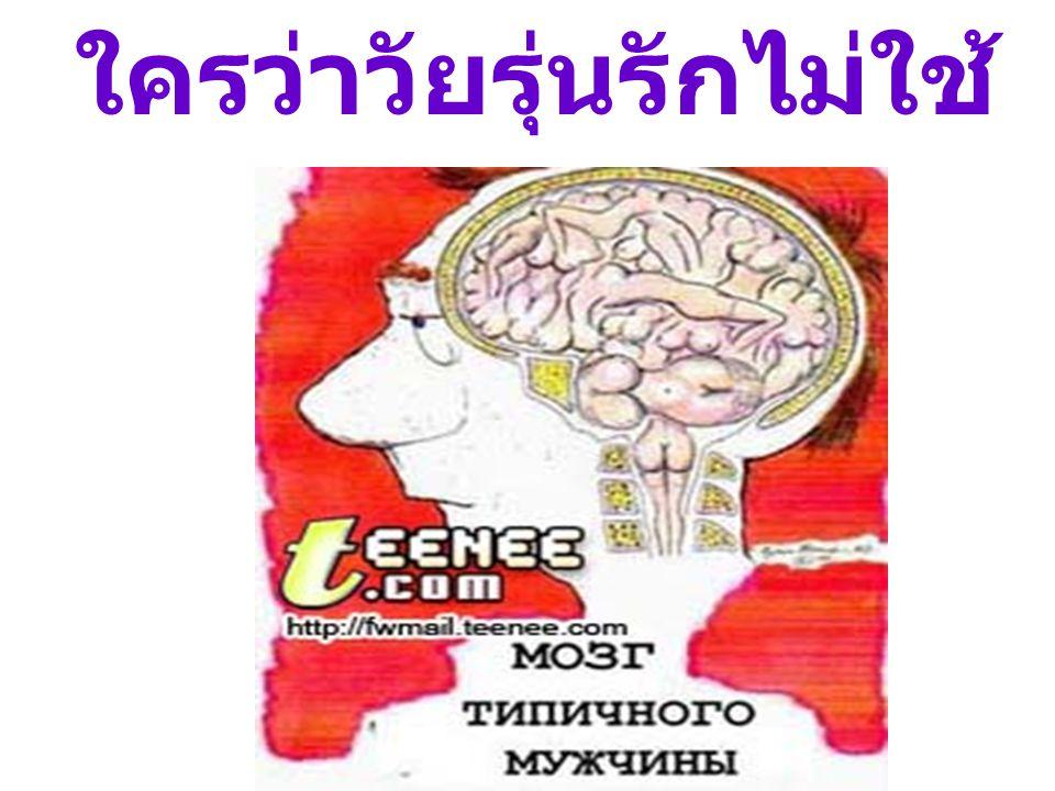 ใครว่าวัยรุ่นรักไม่ใช้ สมอง....