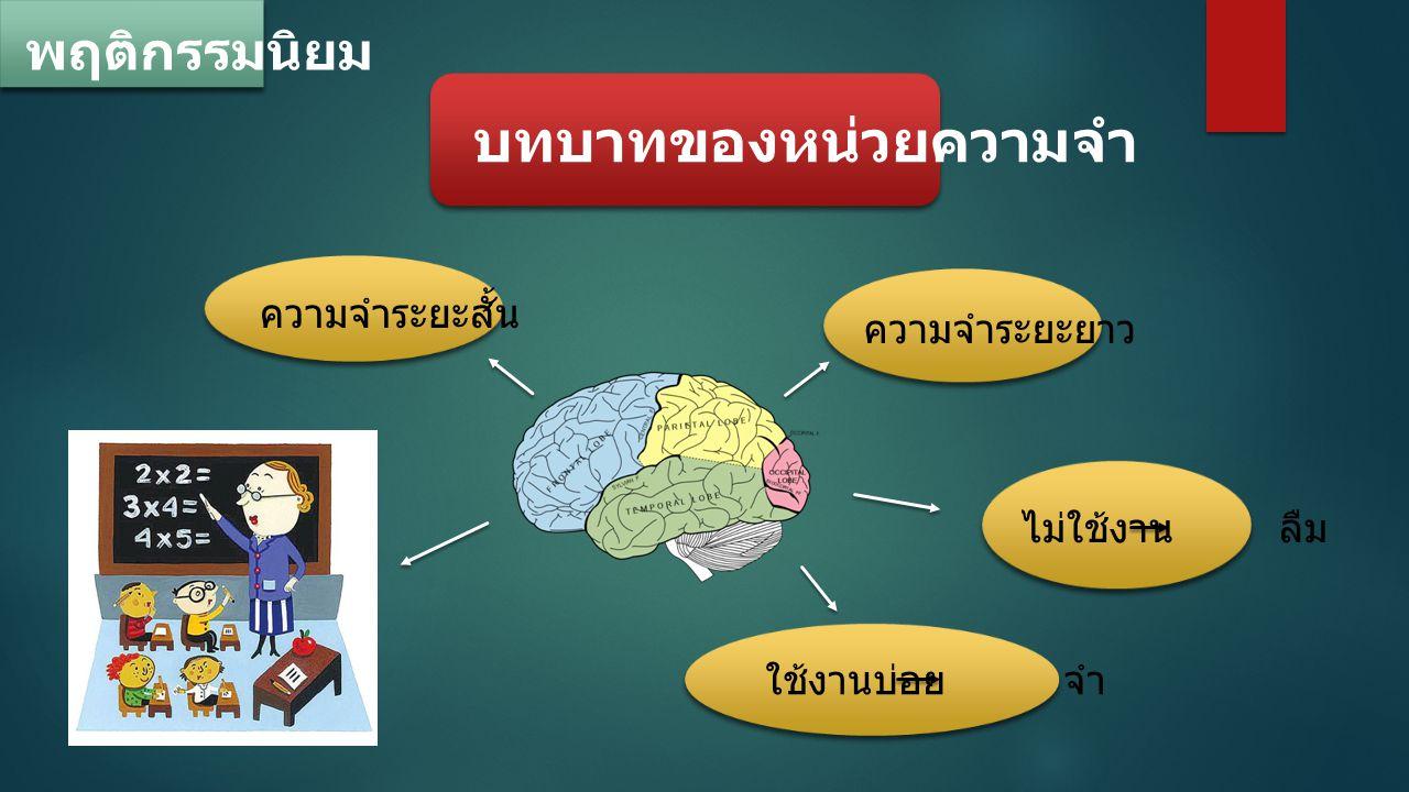 พฤติกรรมนิยม บทบาทของหน่วยความจำ ความจำระยะสั้น ความจำระยะยาว ไม่ใช้งาน ลืม ใช้งานบ่อย จำ