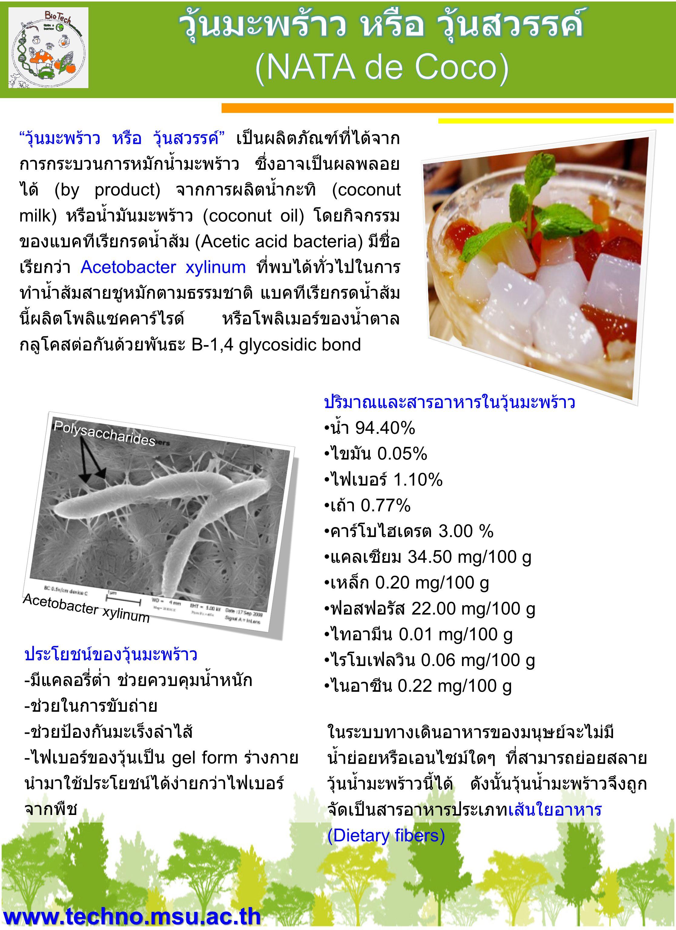 """www.techno.msu.ac.th """" วุ้นมะพร้าว หรือ วุ้นสวรรค์ """" เป็นผลิตภัณฑ์ที่ได้จาก การกระบวนการหมักน้ำมะพร้าว ซึ่งอาจเป็นผลพลอย ได้ (by product) จากการผลิตน้"""