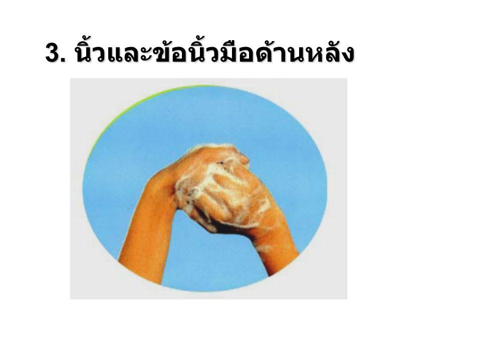 3. นิ้วและข้อนิ้วมือด้านหลัง