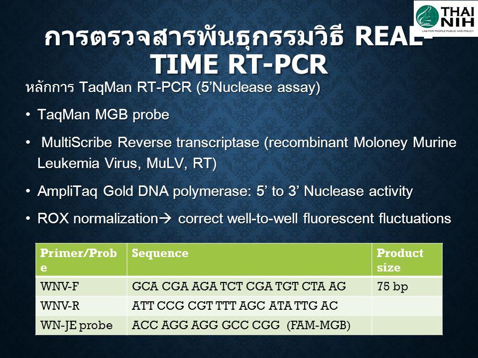 หลักการ TaqMan RT-PCR (5'Nuclease assay) TaqMan MGB probe TaqMan MGB probe MultiScribe Reverse transcriptase (recombinant Moloney Murine Leukemia Viru